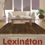 Luxurious Shaggy Rugs by Lexington Collection